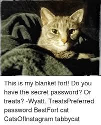Blanket Fort Meme - blanket fort blanket fort meme on sizzle