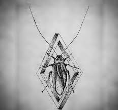 calm dotwork bug in 3d rhombus frame tattoo design tattooimages biz