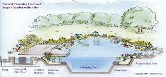 Natural Swimming Pool Eau Naturel Why You Should Consider A Natural Swimming Pool