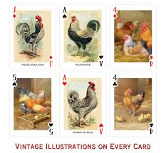 prospero chicken cards