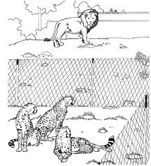 coloring zoo coloring pages 24