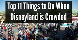 top 11 things to do when disneyland is crowded disney dose