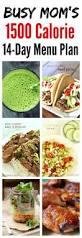 best 25 1500 calorie meal plan ideas on pinterest 1500 calorie