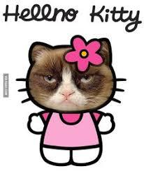 Hello Kitty Meme - hellno kitty hello kitty pinterest kitty