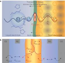 dynamic formation of a solid liquid electrolyte interphase and its