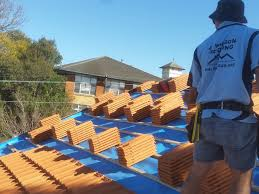 Red Eagle Roofing by Roof Eagle Roof Tile Amazing Wilson Roofing Eagle Roof Tile