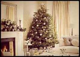 don u0027t buy your christmas tree rent a live one love hilary