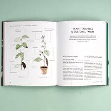 living with plants a guide to indoor gardening by sophie lee