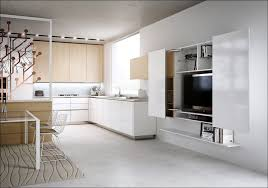 Kitchen Wall Cabinet Dimensions Kitchen 48 Inch Wide Wall Cabinet Standard Upper Cabinet Depth