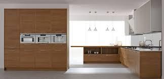 Kitchen Cabinet Modern Wood Kitchen Cabinet With Wall Kitchen - Modern wood kitchen cabinets