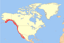 Ensenada Mexico Map by White Seabass Wikipedia