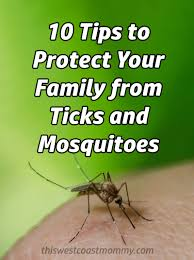 beat the bugs 10 tips to protect your family from ticks and