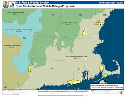 Northeast Usa Map by New England Cottontail New England Cottontail Management