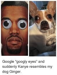 Googly Eyes Meme - google googly eyes and suddenly kanye resembles my dog ginger
