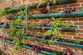 stickybeak of the week vertical gardens with a difference