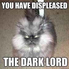 Evil Cat Meme - you have displeased the dark lord cat of infernal evil quickmeme