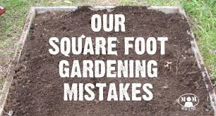 square foot gardening mistakes learn from ours first mom with