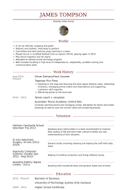 Sample Resume For Delivery Driver by Conducteur Exemple De Cv Base De Données Des Cv De Visualcv