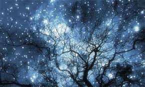 290x174px adorable winter solstice wallpapers 50 1460222280