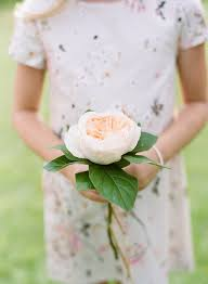bridesmaid bouquet these single flower bridesmaid bouquets are so on trend brides