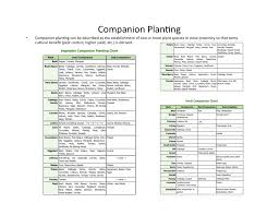 herb growing chart companion planting chart jeppefm tk