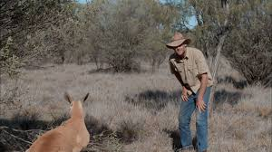 kangaroo dundee nat geo wild