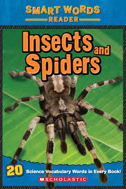 insects and bugs scholastic