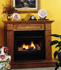 Dual Gas And Wood Burning Fireplace by Vent Free Compact Classic Hearth Dual Burner Gas Fireplace By