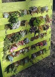 20 creative pallet gardening ideas smash blog trends