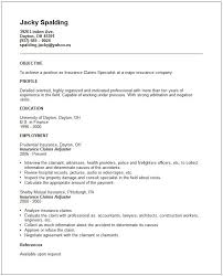cover letter resume health insurance claims letter format to
