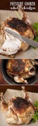 4788 best chicken images on pinterest chicken recipes turkey