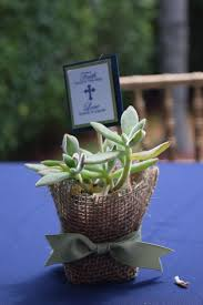 holy communion favors communion favors with succulents faith plants the seed