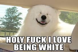 Fuck Love Memes - holy fuck i love being white memes