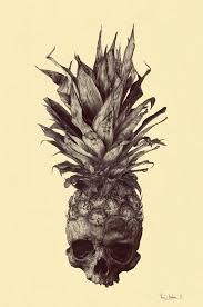 skull pineapple drawing by rémi andron