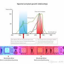 12v dc led grow lights dc 12v led grow light full spectrum 5m led strip light full spectrum