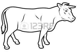 drawn farm animals beef cow pencil and in color drawn farm