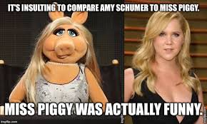 Funny Insulting Memes - it s insulting to compare amy schumer to miss piggy miss piggy was