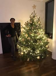 buying a real christmas tree in switzerland for expats living abroad