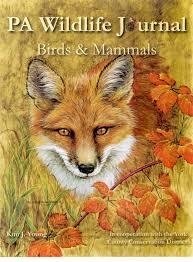 Pennsylvania wildlife images Pennsylvania wildlife journal jpg