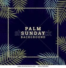palm branches for palm sunday palm sunday banner religious holidays background stock vector