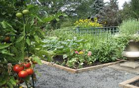 Lifetime Raised Garden Bed Brick Edge Walls Raised Vegetable Garden Beds With Gravel Paths