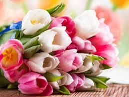 imagenes con flores azules dia de la maestra significado de las flores regalo actitudfem