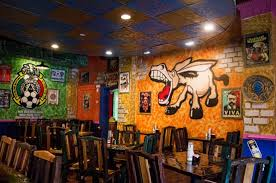 el burro loco a new traditional mexican restaurant in the central