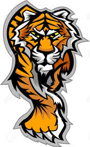 graphic mascot vector image of a tiger body royalty free cliparts