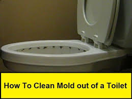 How To Prevent Black Mold In Bathroom How To Clean Mold Out Of A Toilet Howtolou Com Youtube