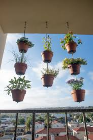 Vertical Garden Pot - how to turn your clay pots into a vertical garden the horticult