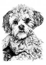 Dogs Coloring Pages For Adults Justcolor Coloring Page Dogs