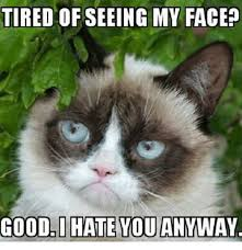 Grumpy Meme Face - tired ofseeing my face good i hate you anyway grumpy cat meme
