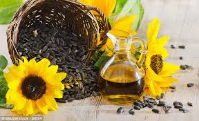 sunflower and fish oils cause liver inflammation daily mail online