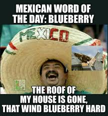 Meme Word - 12 funny mexican word of the day memes
